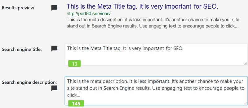 filling out SEO meta fields in WordPress
