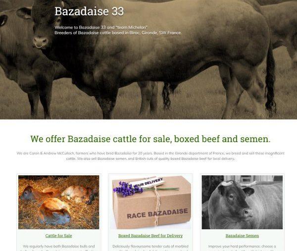 Bazadaise 33